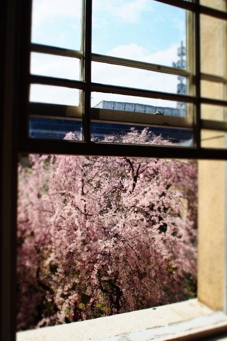 京都府庁2 (466x700).jpg