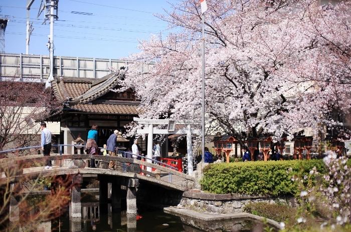 六孫王神社3 (700x463).jpg