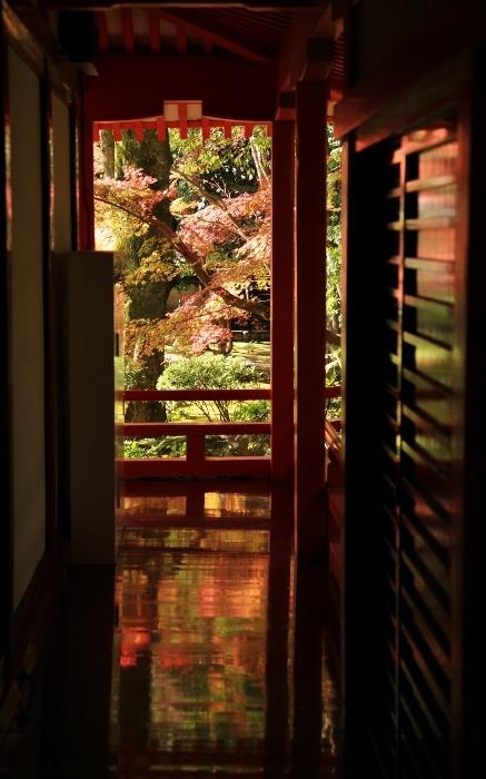 大覚寺 (437x700).jpg