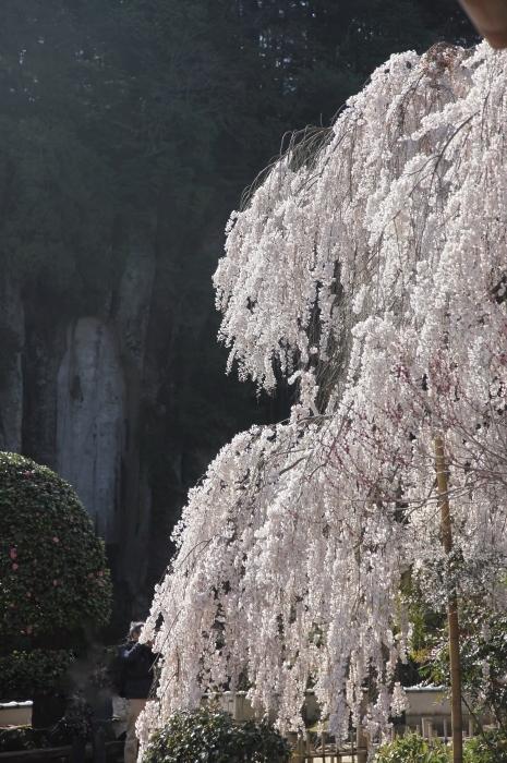大野寺3 (465x700).jpg