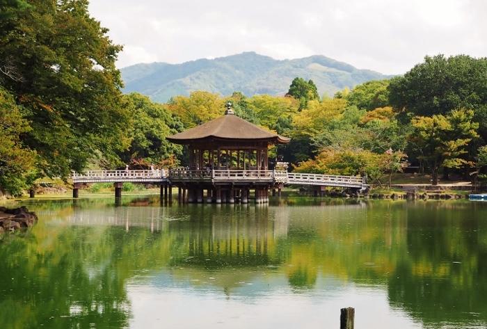 奈良2 (700x473).jpg
