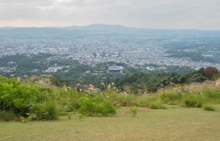 奈良5 (700x448).jpg