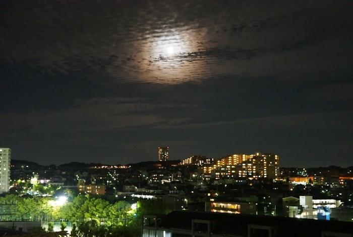 月夜1 (700x471).jpg