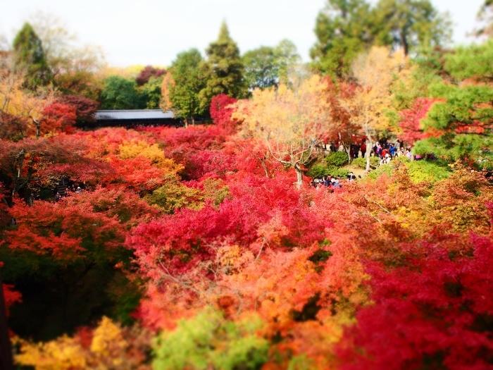 東福寺1 (700x525).jpg