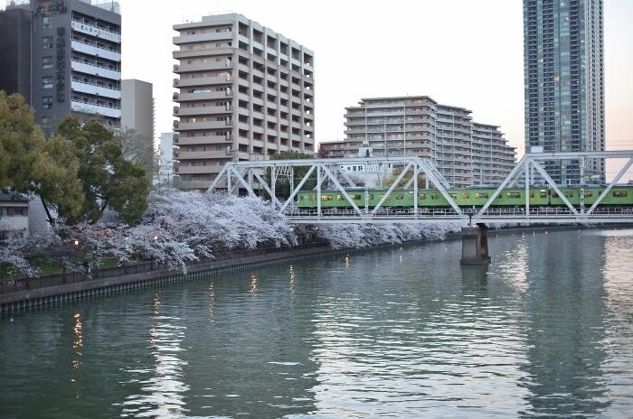 桜ノ宮 (700x464).jpg