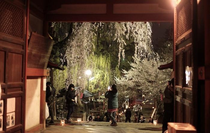 氷室神社1 (700x445).jpg