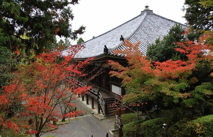 清水寺4 (700x450).jpg