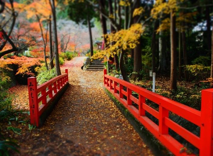 神蔵寺1 (700x513).jpg