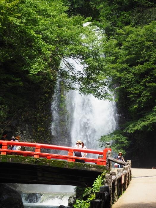 箕面の滝2 (525x700).jpg