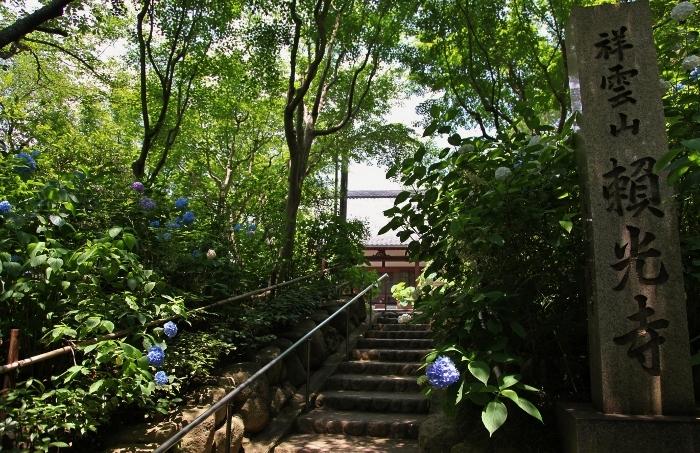 紫陽花寺1 (700x453).jpg