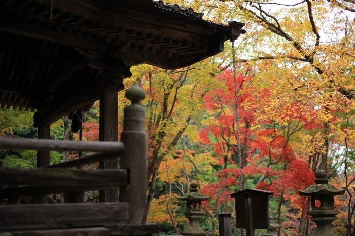 西光寺2 (700x466).jpg