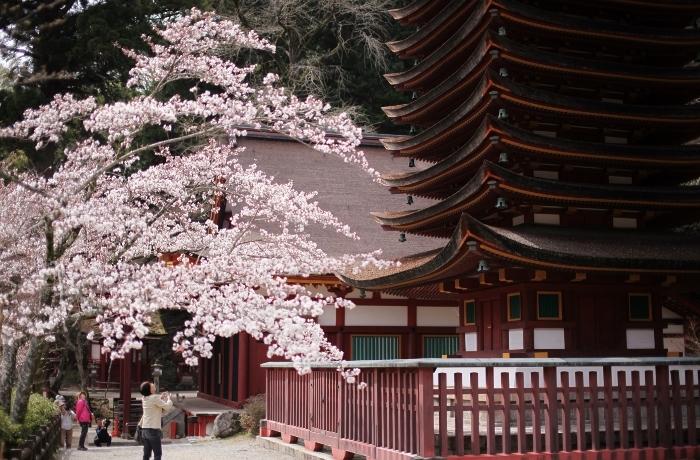 談山神社4 (700x460).jpg