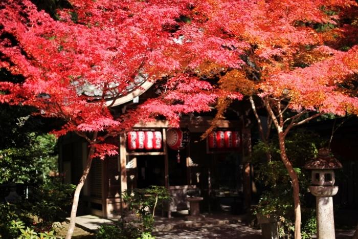 赤山禅院2 (700x467).jpg
