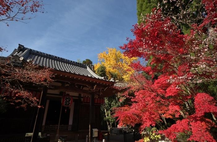 赤山禅院4 (700x458).jpg