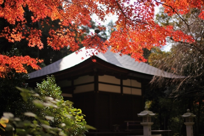 金剛輪寺9 (700x467).jpg