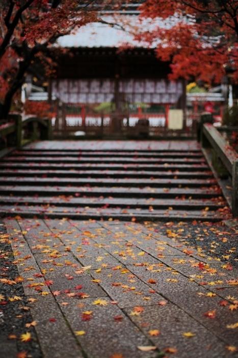 鍬山神社1 (467x700).jpg