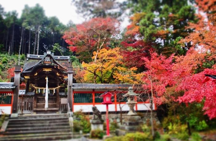 鍬山神社12 (700x457).jpg