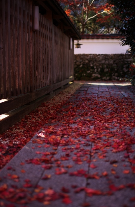 鍬山神社2 (458x700).jpg
