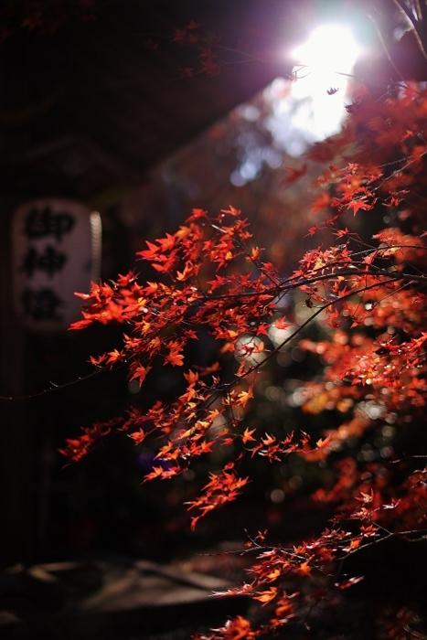鍬山神社4 (467x700).jpg