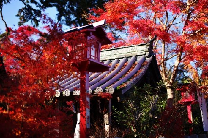 鍬山神社5 (700x467).jpg