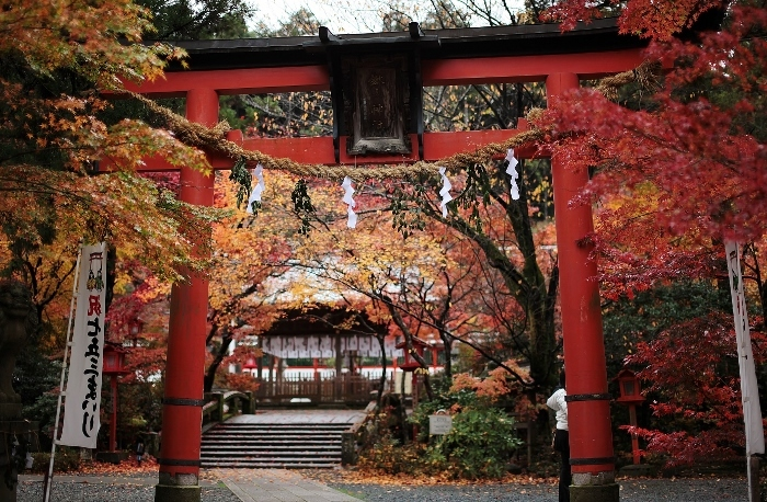 鍬山神社6 (700x458).jpg
