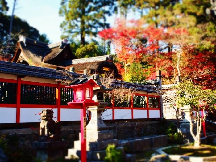鍬山神社8 (700x524).jpg