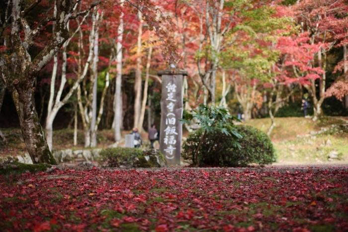 鶏足寺1 (700x467).jpg